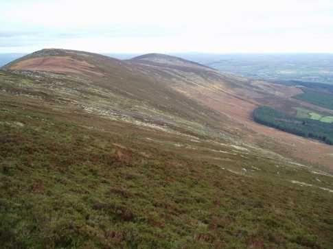 Mount-Leinster-1277824424-2.jpg